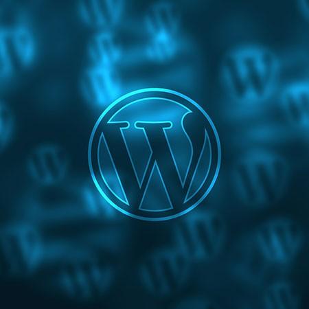 wordpress-training-manual-comp